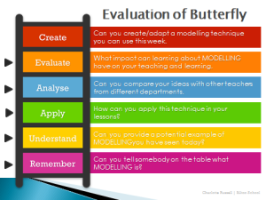 evaluation of butterflly