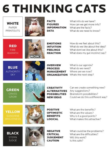 thinking-cats