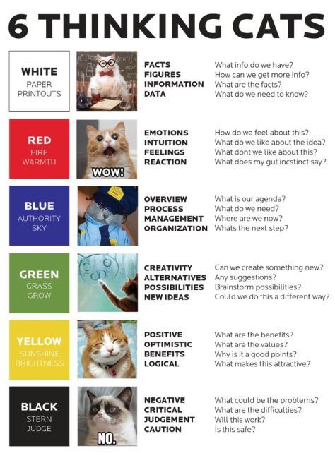 thinking cats.jpg